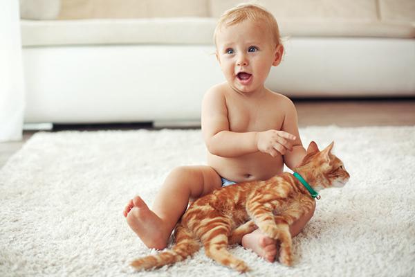 toddler-thinks-cat