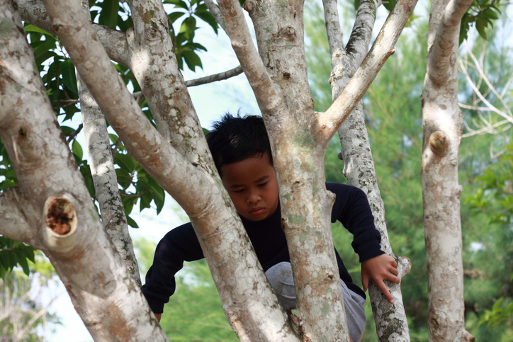 Portrait of happy Asian boy climbing tree in the park